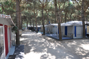 campingplatz florenz in lido degli scacchi italien ratgeber hilfe. Black Bedroom Furniture Sets. Home Design Ideas